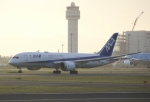 とむくんさんが、新千歳空港で撮影した全日空 787-8 Dreamlinerの航空フォト(写真)