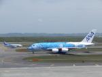 藤助どんさんが、新千歳空港で撮影した全日空 A380-841の航空フォト(写真)