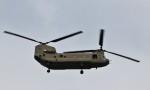 ハム太郎。さんが、厚木飛行場で撮影したアメリカ陸軍 CH-47 Chinookの航空フォト(写真)