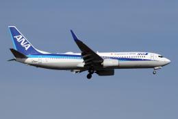 航空フォト:JA78AN 全日空 737-800