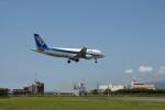 Gambardierさんが、伊丹空港で撮影した全日空 A320-211の航空フォト(写真)
