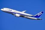 ishikenさんが、伊丹空港で撮影した全日空 787-8 Dreamlinerの航空フォト(写真)
