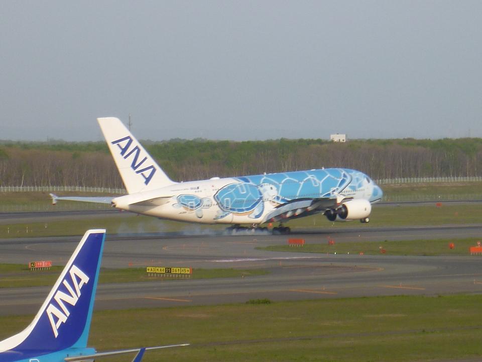 furaibo123さんの全日空 Airbus A380 (JA381A) 航空フォト