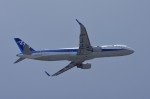 mild lifeさんが、伊丹空港で撮影した全日空 A321-211の航空フォト(写真)