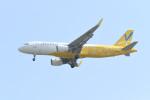 kuro2059さんが、台湾桃園国際空港で撮影したバニラエア A320-214の航空フォト(写真)