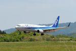 hikanagiさんが、大館能代空港で撮影した全日空 737-881の航空フォト(写真)