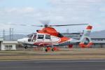 KeBongoさんが、八尾空港で撮影したエアバス・ヘリコプターズ・ジャパン AS365N3 Dauphin 2の航空フォト(写真)