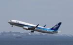 ハム太郎。さんが、羽田空港で撮影した全日空 737-881の航空フォト(写真)