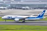 マツさんが、羽田空港で撮影した全日空 787-8 Dreamlinerの航空フォト(写真)
