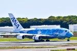 マツさんが、成田国際空港で撮影した全日空 A380-841の航空フォト(写真)