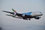 kina309さんが、成田国際空港で撮影したエミレーツ航空 A380-861の航空フォト(写真)