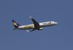 ベリックさんが、茨城空港で撮影したスカイマーク 737-8FHの航空フォト(写真)