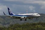 endress voyageさんが、岡山空港で撮影した全日空 737-881の航空フォト(写真)