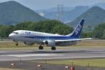 qooさんが、高松空港で撮影した全日空 737-881の航空フォト(写真)