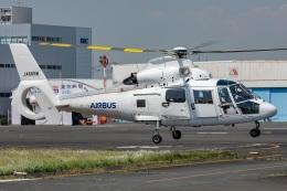 まんぼ しりうすさんが、東京ヘリポートで撮影したエアバス・ヘリコプターズ・ジャパン AS365N2 Dauphin 2の航空フォト(飛行機 写真・画像)