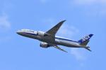 ひこ☆さんが、新千歳空港で撮影した全日空 787-8 Dreamlinerの航空フォト(写真)