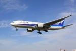 けいとパパさんが、伊丹空港で撮影した全日空 777-281の航空フォト(写真)