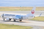 FLYING  HONU好きさんが、関西国際空港で撮影した日本航空 737-846の航空フォト(写真)