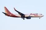 Echo-Kiloさんが、新千歳空港で撮影したマリンド・エア 737-8GPの航空フォト(写真)