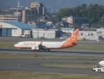 X-Airlinesさんが、福岡空港で撮影したチェジュ航空 737-8Q8の航空フォト(飛行機 写真・画像)
