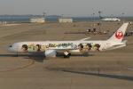 ロボキさんが、中部国際空港で撮影した日本航空 787-9の航空フォト(写真)