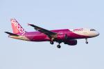 Echo-Kiloさんが、新千歳空港で撮影したピーチ A320-214の航空フォト(写真)