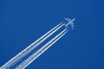 Echo-Kiloさんが、新千歳空港で撮影した全日空 A380-841の航空フォト(写真)