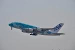 hirokongさんが、成田国際空港で撮影した全日空 A380-841の航空フォト(飛行機 写真・画像)