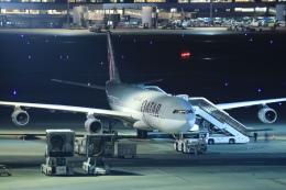 ryu330さんが、羽田空港で撮影したカタールアミリフライト A340-313Xの航空フォト(飛行機 写真・画像)