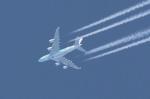 T_pontaさんが、新千歳空港で撮影した全日空 A380-841の航空フォト(写真)