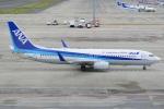 てつさんが、中部国際空港で撮影した全日空 737-881の航空フォト(写真)