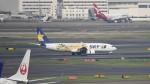 redbull_23さんが、羽田空港で撮影したスカイマーク 737-8FHの航空フォト(写真)