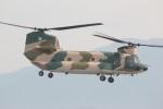 DONKEYさんが、新田原基地で撮影した航空自衛隊 CH-47J/LRの航空フォト(写真)