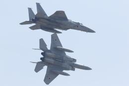 黄色の168さんが、東千歳駐屯地で撮影した航空自衛隊 F-15J Eagleの航空フォト(飛行機 写真・画像)
