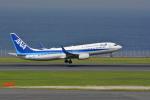 sukiさんが、羽田空港で撮影した全日空 737-881の航空フォト(写真)