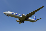 よしぱるさんが、伊丹空港で撮影した全日空 737-881の航空フォト(写真)