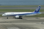 SIさんが、羽田空港で撮影した全日空 A320-211の航空フォト(写真)