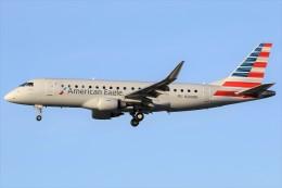 コンパス航空 イメージ