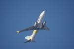 senbaさんが、羽田空港で撮影したAIR DO 737-781の航空フォト(写真)