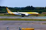 まいけるさんが、成田国際空港で撮影したスクート 787-9の航空フォト(写真)