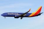 masa707さんが、ロサンゼルス国際空港で撮影したサウスウェスト航空 737-8H4の航空フォト(写真)