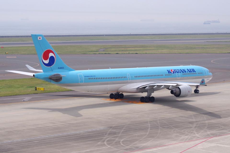 yabyanさんの大韓航空 Airbus A330-300 (HL8003) 航空フォト