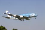 ばしっちさんが、成田国際空港で撮影した全日空 A380-841の航空フォト(写真)