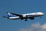 採れたてほしいもさんが、成田国際空港で撮影した全日空 777-381/ERの航空フォト(写真)