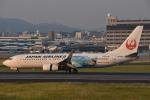 ITM44さんが、伊丹空港で撮影した日本航空 737-846の航空フォト(写真)