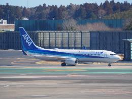 鷹71さんが、成田国際空港で撮影した全日空 737-881の航空フォト(飛行機 写真・画像)