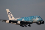 GNPさんが、新千歳空港で撮影した全日空 A380-841の航空フォト(写真)