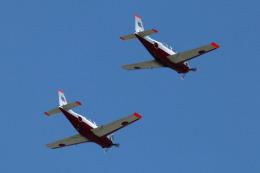 Wasawasa-isaoさんが、静浜飛行場で撮影した航空自衛隊 T-7の航空フォト(飛行機 写真・画像)
