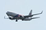 kuro2059さんが、台湾桃園国際空港で撮影したマレーシア航空 737-8H6の航空フォト(写真)