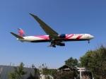 m_aereo_iさんが、成田国際空港で撮影したデルタ航空 767-432/ERの航空フォト(写真)